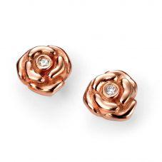 D For Diamond Silver Rose Gold Plated Diamond Rose Stud Earrings E5155