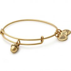 ALEX AND ANI Path Of Symbols Unexpected Blessings Bangle A17EBUBRG