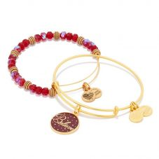 ALEX AND ANI Believe Wine Art Infusion Set of 2 Charm Bangles A16HS01SG