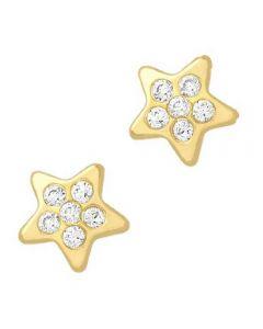9ct 6mm CZ Star Stud Earrings 1.58.8969