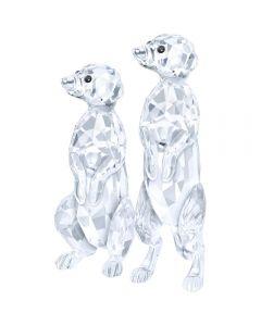 Swarovski Meerkats Figurine 5135929