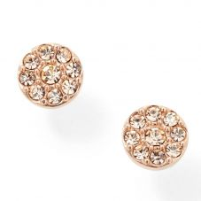 Fossil Jewellery Rose Gold Plated Crystal Cluster Studs JF00830791