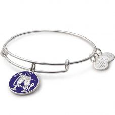 ALEX AND ANI Color Infusion Let's Toast! Bangle A17EB01SS