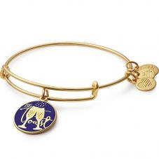 ALEX AND ANI Color Infusion Let's Toast! Bangle A17EB01SG